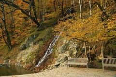 что может быть красивее осени? (Stacey048) Tags: autumn fall sochi russia caucasus waterfall forest estosadok krasnayapolyana bestofrussia