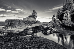 no man is an island (Port View) Tags: fujixe2 baxtersharbour novascotia canada cans2s 2016 fall low tide rocks water river reflection sky clouds sun sunlight afternoon mono monochrome blackandwhite bw stacks trees fundy shore coast