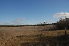DSG_7390 Panorama 3 of 6 at Photo Post #2 (Greying_Geezer) Tags: 2016 hazelbird ncc natureconservancyofcanada hamiltontownship ort hiking naturereserves hazelbirdnr2