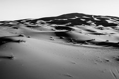 IMG_6227 (Israel Filipe) Tags: marrocos