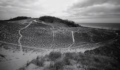 Dunes (mswan777) Tags: nature dune sand grass lake michigan beach expanse landscape cloud sky nikon d5100 sigma 1020mm ansel seascape water waves
