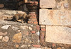 Delhi-118 (Andy Kaye) Tags: delhi india deccan indian new qutub minar qutb qutab qutabuddin aibak