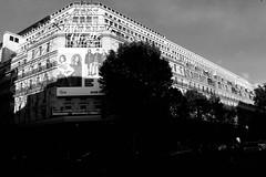 Galeries Lafayette (petia.balabanova(tnx for +2 million views)) Tags: shopping city galeries lafayette paris france travel 2470mm nikond800 building architecture monochrome blackandwhite bw light shadow