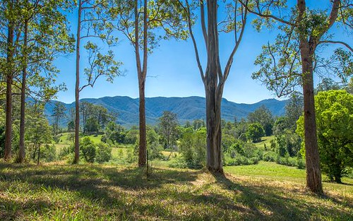Lot 21, 605 Roses Road, Bellingen NSW 2454