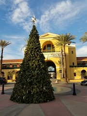 December 01, 2016 (13) (gaymay) Tags: california desert gay love riversidecounty coachellavalley cathedralcitytowncenter cathedralcity