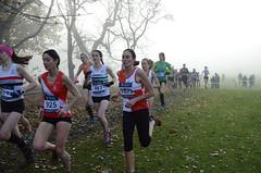 DSC_3424 (Dave Pinnington Photography) Tags: european womens xc trials sefton park liverpool 261116 photos by dave pinnington