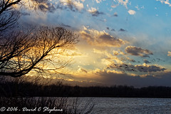 Geese Fly In At Sunset (dcstep) Tags: canadageese birdsinflight bif flying wings sunset aurora colorado unitedstates us f4a0775dxo allrightsreserved copyright2016davidcstephens dxoopticspro113 cherrycreekstatepark pixelpeepers