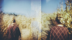 """I mean he stood by Jenny."" (H o l l y.) Tags: lomography 120mm diana square long exposure diptych corn field nature landscape blur portrait fall maze blue sky retro indie vintage analog film"