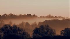 December fog (Ostseetroll) Tags: deu deutschland geo:lat=5403892938 geo:lon=1068876386 geotagged pönitzamsee scharbeutz schleswigholstein herbst autumn bäume trees nebel fog