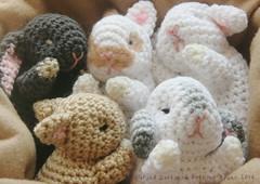 Sleeping baby bunnies (ayano-pany) Tags: amigurumi amigurumianimal amigurumibunny crochet cute bunny babybunny lapin conejo handmade sleeping          toy toys