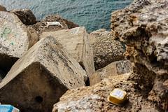 Cdiz (Jantbrown) Tags: santa sea espaa animal cat de la mar andaluca spain catedral cruz gato cdiz abandonado callejero rompeolas