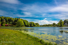 Pantheon's Clouds (JKmedia) Tags: bridge summer lake tree green water architecture garden landscape temple spring arch pantheon arches stourhead greenery colourful wiltshire nationaltrust tress waterscape arched canoneos5dmkiii boultonphotography