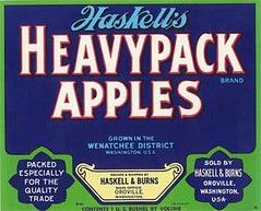 """Haskells Heavypack Blue • <a style=""""font-size:0.8em;"""" href=""""http://www.flickr.com/photos/136320455@N08/21471721785/"""" target=""""_blank"""">View on Flickr</a>"""