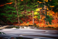 Golden Time (ROPhoto77) Tags: longexposure autumn trees red motion green water leaves river outdoor maine rocky foliage