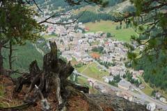 stumped view (Riex) Tags: alps alpes landscape schweiz switzerland town suisse dive drop lookout stump trunk fujifilm svizzera paysage ville overview engadine tronc pontresina graubünden grisons xm1 graubunden explored puntraschigna vueplongeante xtrans divingview fujinonxc1650mmf3556ois muottaspuntraschigna muottasdapuntraschigna