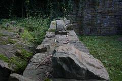 Burgruine 3 (Behringer-Katja) Tags: ruine gras stein burg grashalm