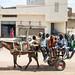 The carts of Touba - pilgrims on their way