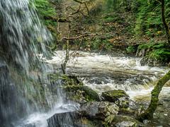 20151115-_1150479.jpg (IanRolo) Tags: bridge river y waterfalls betwsycoed betws coed snowdonia miners afon minersbridge llugwy afonllugwy riverllugwy
