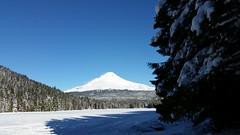 Mount Hood from a frozen over Trillium Lake (mjfmjfmjf) Tags: snow oregon favorited trilliumlake 2016 snoeshoe