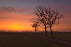 Sunday morning (jkatanowski) Tags: morning tree sunrise canon landscape outdoor tokina 1116mm