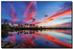 First Sunset of 2016 (Fraggle Red) Tags: trees sunset lake clouds reflections evening nationalpark rocks florida dusk everglades evergladesnationalpark pinetrees hdr enp 7exp canonef1635mmf28liiusm miamidadeco dphdr pinegladeslake firstsunsetof2016