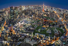 City of Tokyo (Suzuki san) Tags: tokyo japan twilight tokyotower longexposure downtown