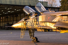 TLE Jaguar Shot - RAF Cosford (harrison-green) Tags: jaguar gr3 raf royal air force cosford sepecat retirement end an era canon eos 700d sigma 18250mm op granby spotty jag special paint scheme aircraft aviation 238 squadron outdoor vehicle airplane t2 jet trainer fast animal tle timeline events photoshoot photo shoot night nightshoot steven harrisongreen