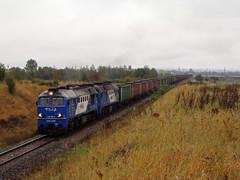 ST44-2031 (MarSt44) Tags: st44 st442031 lhs linia hutniczo siarkowa kozw kozlow kolej polska pkp gagarin iwan koomna poland train diesel power