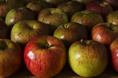 Apple Audience (shawnraisin d+p) Tags: canon6d shawnwhite apple apples colours dark flash food fruit green mood nostalgia red reminisce reminiscing retro stilllife studio studiolight