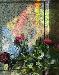 (B Plessi) Tags: cimitero monumentale milano iralia arcobaleno arcenciel rainbow tomba graves fiore raggi soleil