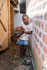UG1605_204 (Heifer International) Tags: uganda ug