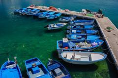 Row, row, row your boat (andbog) Tags: sony alpha ilce a6000 sonya6000 emount mirrorless csc sonya oss sel 1650mm selp1650 sonyα sonyalpha sony⍺6000 sonyilce6000 sonyalpha6000 ⍺6000 ilce6000 italia italy puglia apulia salento blue blu sea mare summer estate seascape mediterranean mediterraneo harbour porto apsc gallipoli boat barca fisherman pescatore over100fav