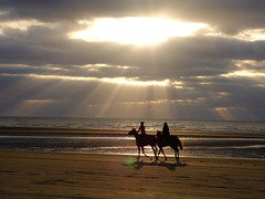 Le Touquet Beach .. (m_laRs_k) Tags: girls sunset beach backlit horses riding travel vacation france parisplage letouquet velvia filmsimulation x30 fuji reiten pferde sonnenstrahlen meer strand gegenlicht le touquet plage пое́здка 旅游 viaje