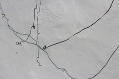 Abstract in T (Julie Rutherford1) Tags: wall wire shadow scotland lismore white