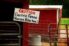 Things to Remember (CarusoPhoto) Tags: pentax ks2 smc da 50200mm f456 ed wr zoom lens pentaxsmcpentaxda50200mmf456edwrzoomlens john caruso carusophoto apple holler wisconsin sturtevant sign funny fence horse horses barn banal mundane ordinary everyday regular hand painted