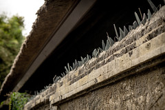Jagged security (QuantumDotter) Tags: glass shards wall bali security kuta indonesia id