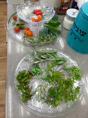 Daily Harvest (Assaf Shtilman) Tags: chilli chili peppers bokchoi tomatoes vegetables sage mint herbs
