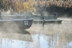 Seehausen am Staffelsee (murnau_am_staffelsee) Tags: murnau staffelsee nebel boot bayern dasblaueland landkreisgarmischpartenkirchen seehausen oberbayern ger