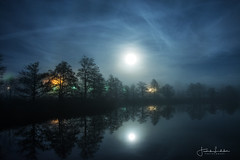 MoonLake (Fredrik Lindedal) Tags: moon moonlight reflection reflections tree trees tripod clouds stars house light lights lake water night nightfall nikon sweden sverige onewithnature fredriklindedalse fredriklindedal luna d7200 nightshot