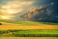 Fields (Katarina 2353) Tags: landscape spring serbia fields vojvodina srbija serbiainspired