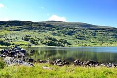 Tryfan (heathernewman) Tags: uk mountain lake reflection green water wales landscape nationalpark unitedkingdom snowdonia tryfan llyn