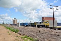 8030 & 864 (rob3802) Tags: train diesel loco nsw locomotive alco qube diesellocomotive 864 8030 dieselelectriclocomotive nswgr 80class 830class goodwinalco greentrains