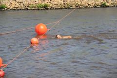 Reitdieptochten Garnwerd 2015 195 (AWJ Hefting) Tags: swimming reitdiep garnwerd zwemmen reitdieptochten
