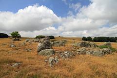 Aubrac (Yvan LEMEUR) Tags: france landscape granite nuages paysage extrieur randonne aveyron aubrac midipyrnes lozre