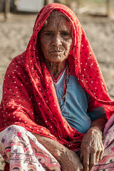 Old Woman Living on Alang Beach (AdamCohn) Tags: portrait india adam beach metal labor recycling scrapping scrap cohn alang shipyards shipbreaking shipbreaker shipbreakers adamcohn wwwadamcohncom