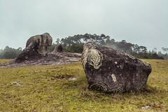 Piedras Encimadas (Xavy Vp) Tags: de mexico nikon stones valle valley puebla piedras vp xavy encimadas 1224mmf4 d7100