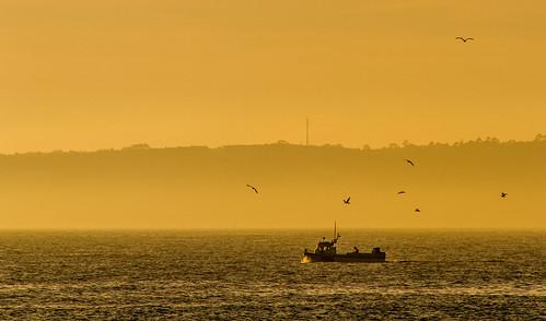 Galician Fishing Boat