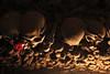 Skulls, coins and...a rose (Gianluca De Simone) Tags: money cemetery rose skull coin worship capa rosa captain bones napoli museo tradition custom popular peste adoption culto teschio neapolitan cimitero capitano popolare ossa soldi osso concetta preti napoletano adozione tradizione poveri suda fontanelle neaples cranio pezzentelle