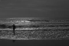 vagues sur la plage (marcassin66) Tags: ocean mer nb lumiere vague plage contrejour seul