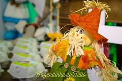FAZENDINHA DO TULIO 2015 FINAL-24 (agencia2erres) Tags: aniversario 1 infantil festa ano fazenda fazendinha